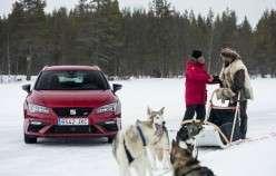 Хто швидше на льоду, собача упряжка або автомобіль
